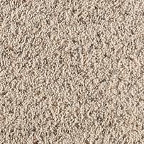 Carpet with Fleck