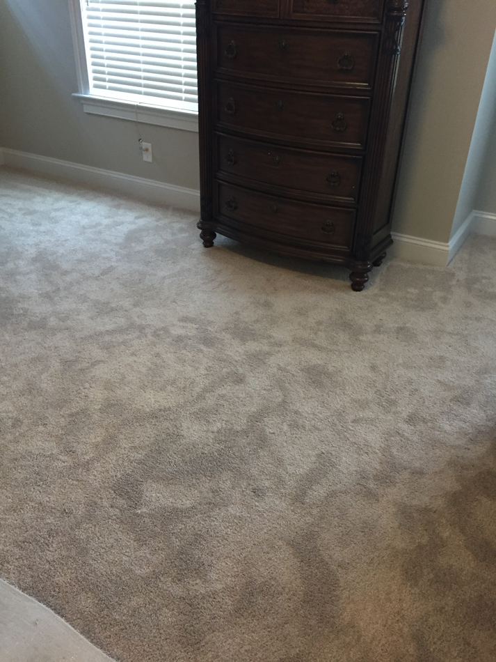 Master Bedroom Floor: Beaulieu Carpet